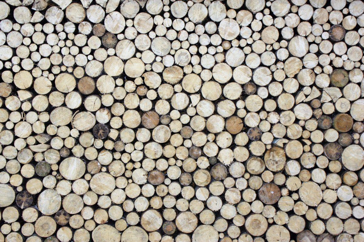 Fototapete0311 0G - Tapete Holzstapel