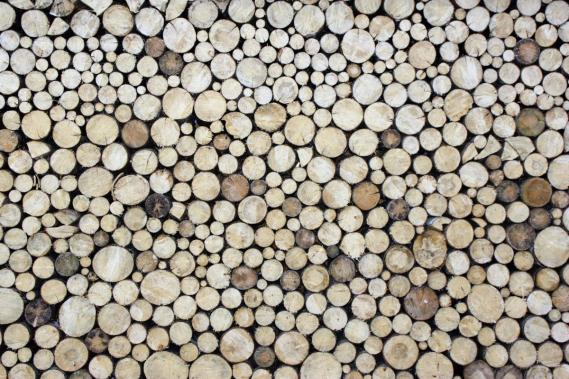 Mural with woodpile 0311-0