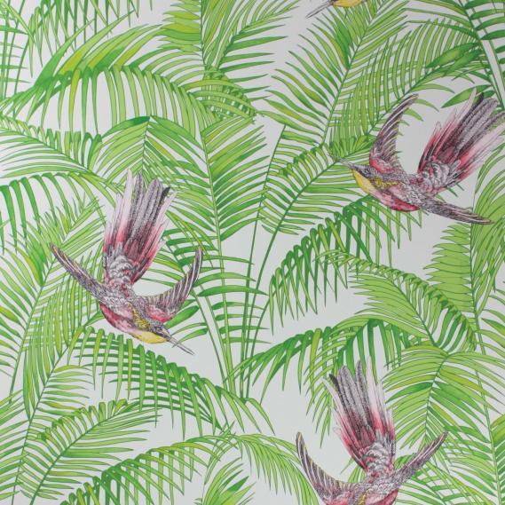 paper-backing wallpaper Osborne & Little SUNBIRD W6543-02