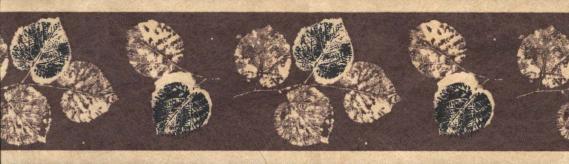 Bordüre Vlies mit Blättern 677N04