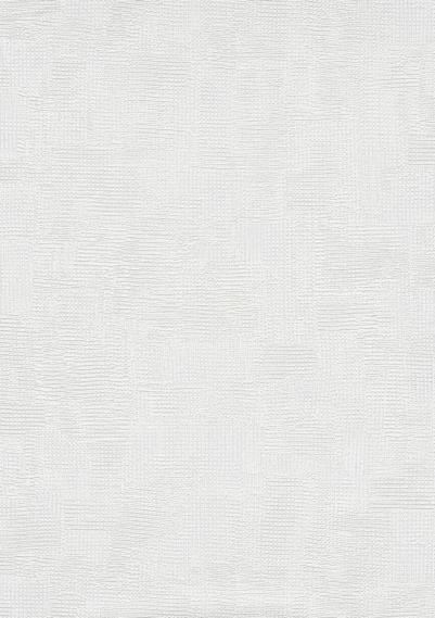 Überstreichbare Vliestapete 3529-01