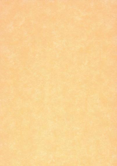 Non-woven foam wallpaper 7552-06