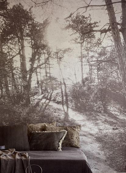 Wandbild Eijffinger LINO Im Wald 379100